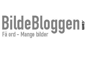 Bildebloggen