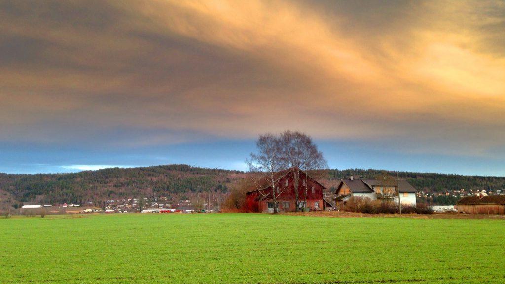 Grønn vinter i Lier